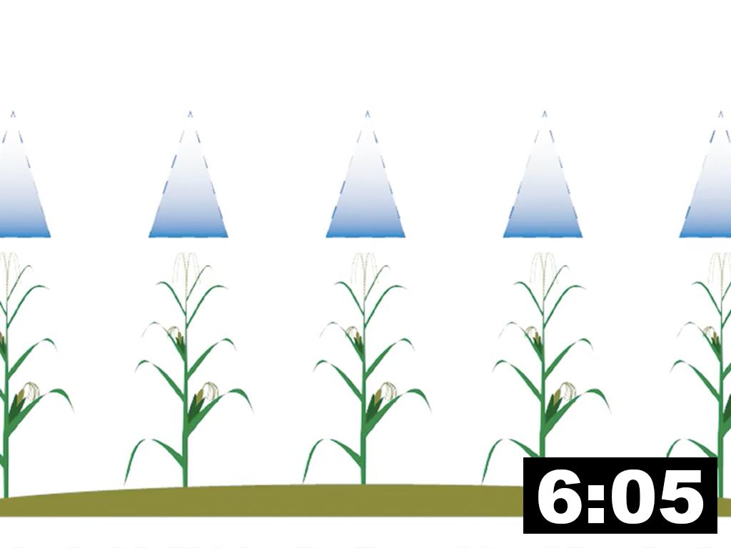 In-furrow Fertilizer & Foliar Feeding